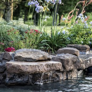 traditions pools & landscape bryan college station texas - pool project with rock accents & landscaping