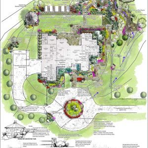 traditions pools & landscape bryan college station texas - pool & landscaping design & planning 7
