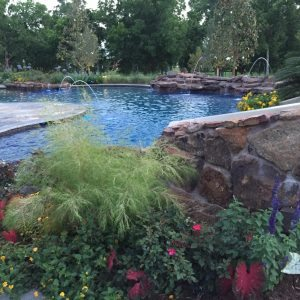 traditions pools & landscape bryan college station texas - swimming pool construction rock design & flowerbeds