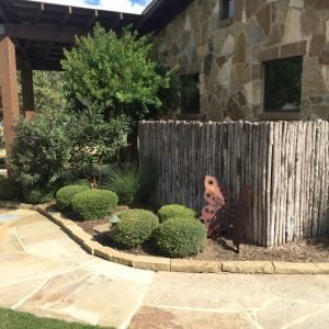 traditions pools & landscape bryan college station texas - custom landscaping design & walkways